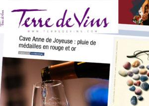 article-terre-de-vins